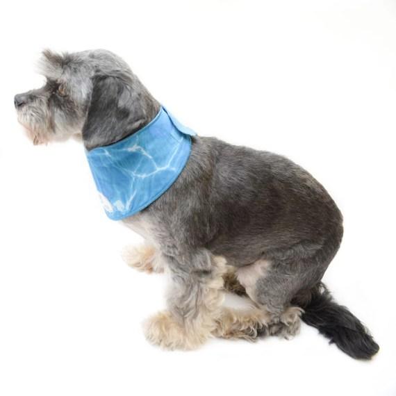 all for paws cool mat bandana refrescante para perros en miraflores lima peru