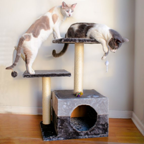 gimnasio castillo rascador para gatos madera miraflores lima peru cat-oh arquipets superpet ktz