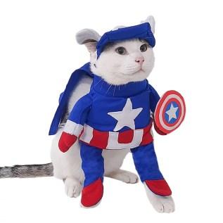disfraz para gato capitan america