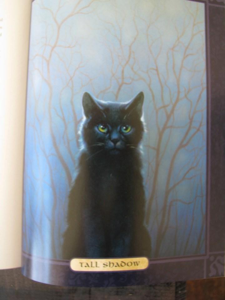 Warrior cat Tall Shadow black cat green eyes