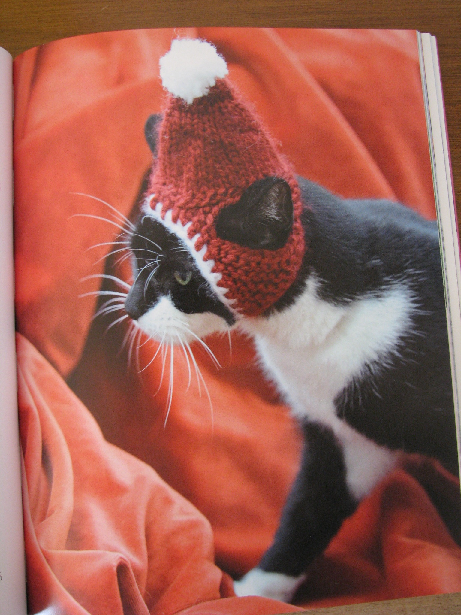 Cats In Hats 30 Knit And Crochet Hat Patterns For Your