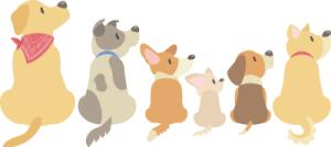 犬のイメージ