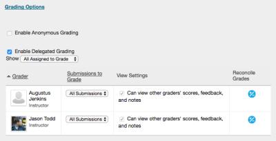 delegated-grading-options