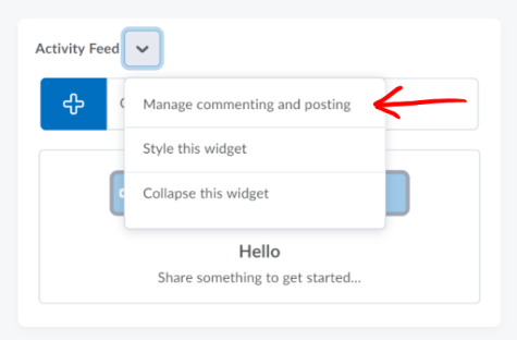 Activity Feed manage commenting and posting option