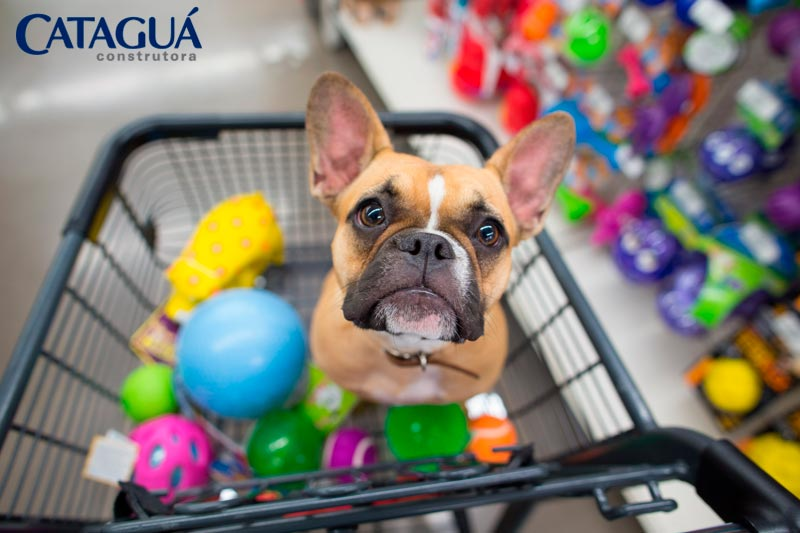 Pet place as vantagens de ter um espaco exclusivo para animais no condominio
