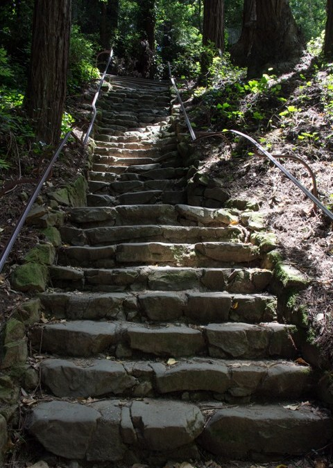 Dipsea Stairs – Big Stone Steps