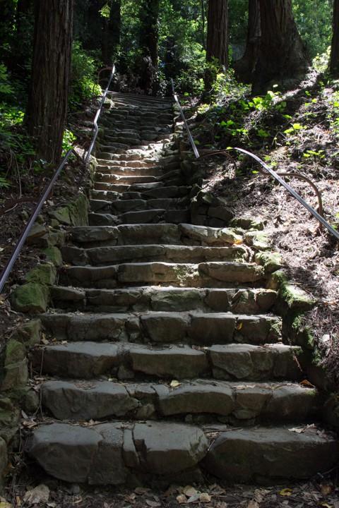 Dipsea Stairs - Big Stone Steps - SKU: CA_DIP_0068