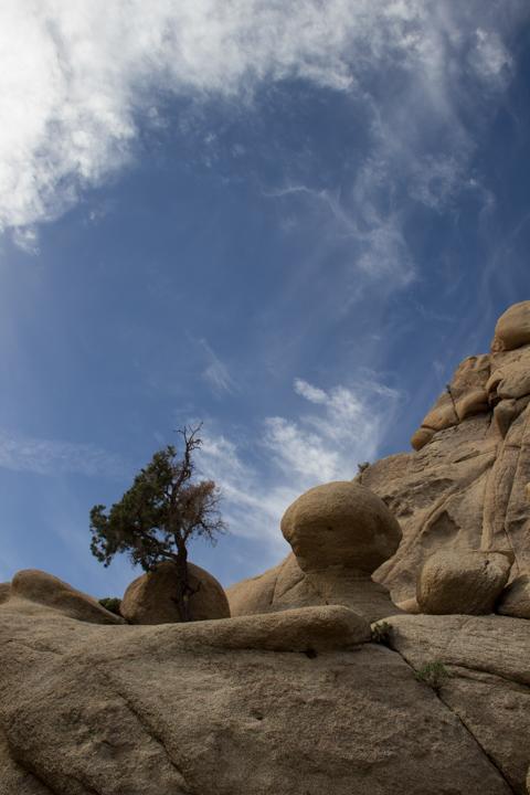 Rock formations at Joshua Tree