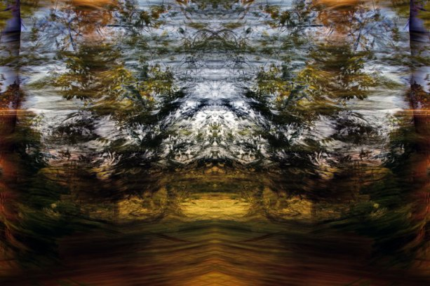 Tracing Forest Ghost I (2011) 90 x 60 cm C-Print
