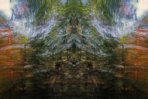 Tracing Forest Ghost V (2011) 90 x 60 cm C-Print