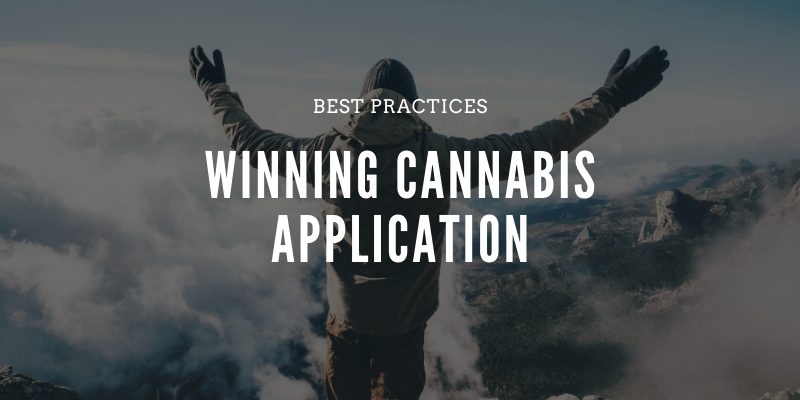winning cannabis application