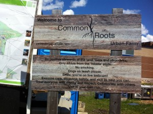 CommonRootsUrbanFarm1