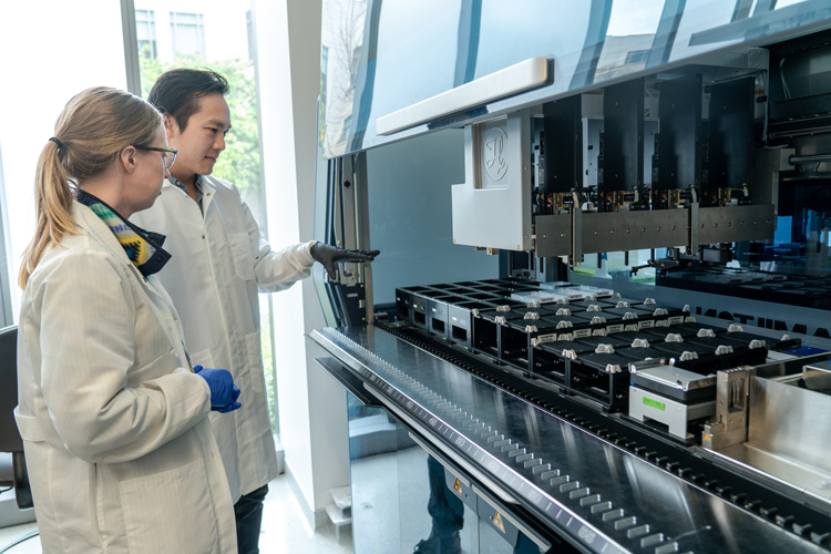 Photograph of lab being fine tuned for CRISPR testing.