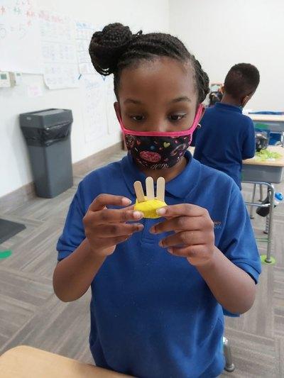 Catalyst Student creates teeth for animals in STEM lesson