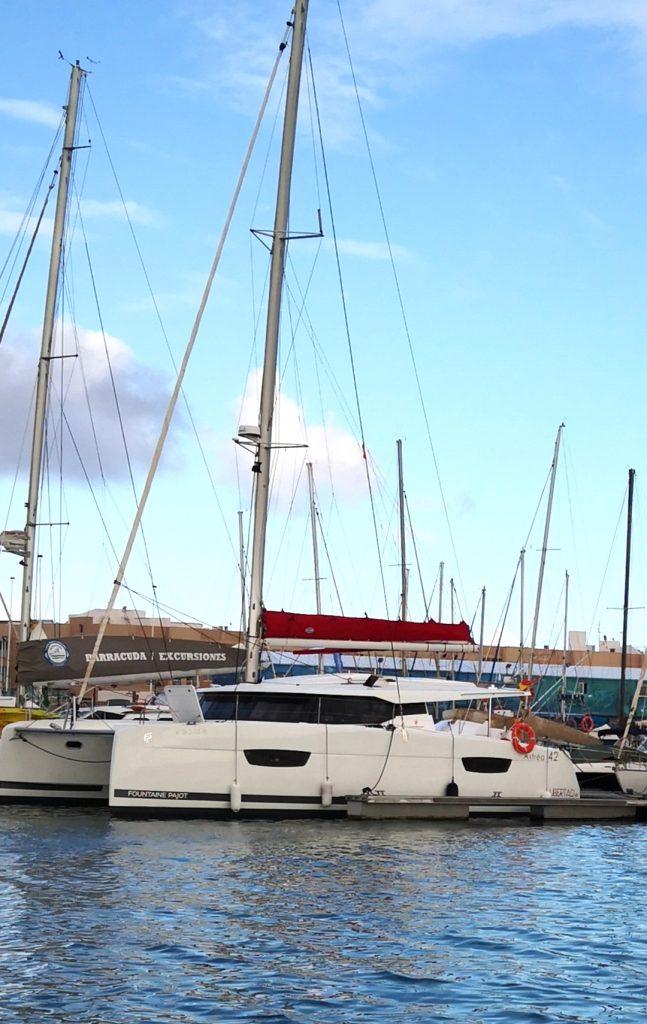 catamaran tenerife excursion