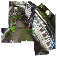 Balcony Garden Photo Collage
