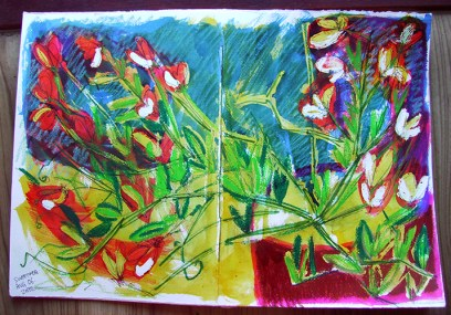 Weekly Sketch – Sweetpeas – 11/08/12