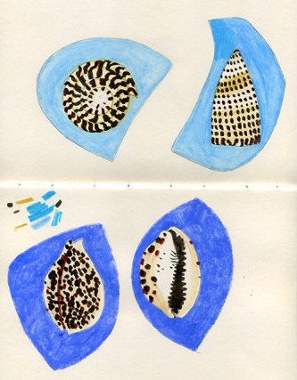 Weekly Sketch – Shells & Creating Pattern – 28/10/2012