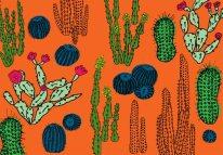 Hot Cacti Garden
