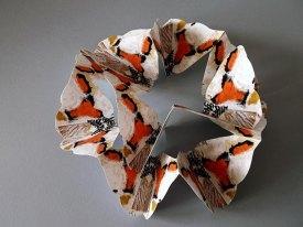 moth ccronin