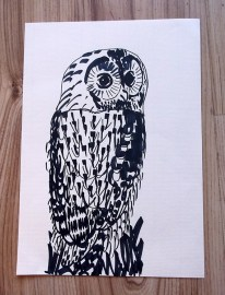 Tawny owl black pen sketch A4 © Catherine Cronin