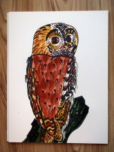 Tawny owl black pen & watercolour sketch A4 © Catherine Cronin