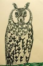 Long-eared Owl, black pen, A4 © Catherine Cronin