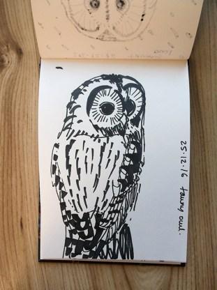 Tawny owl black pen sketch © Catherine Cronin