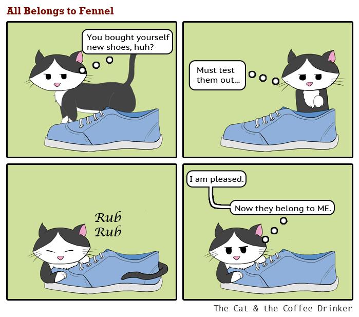 My cat has a foot fetish…
