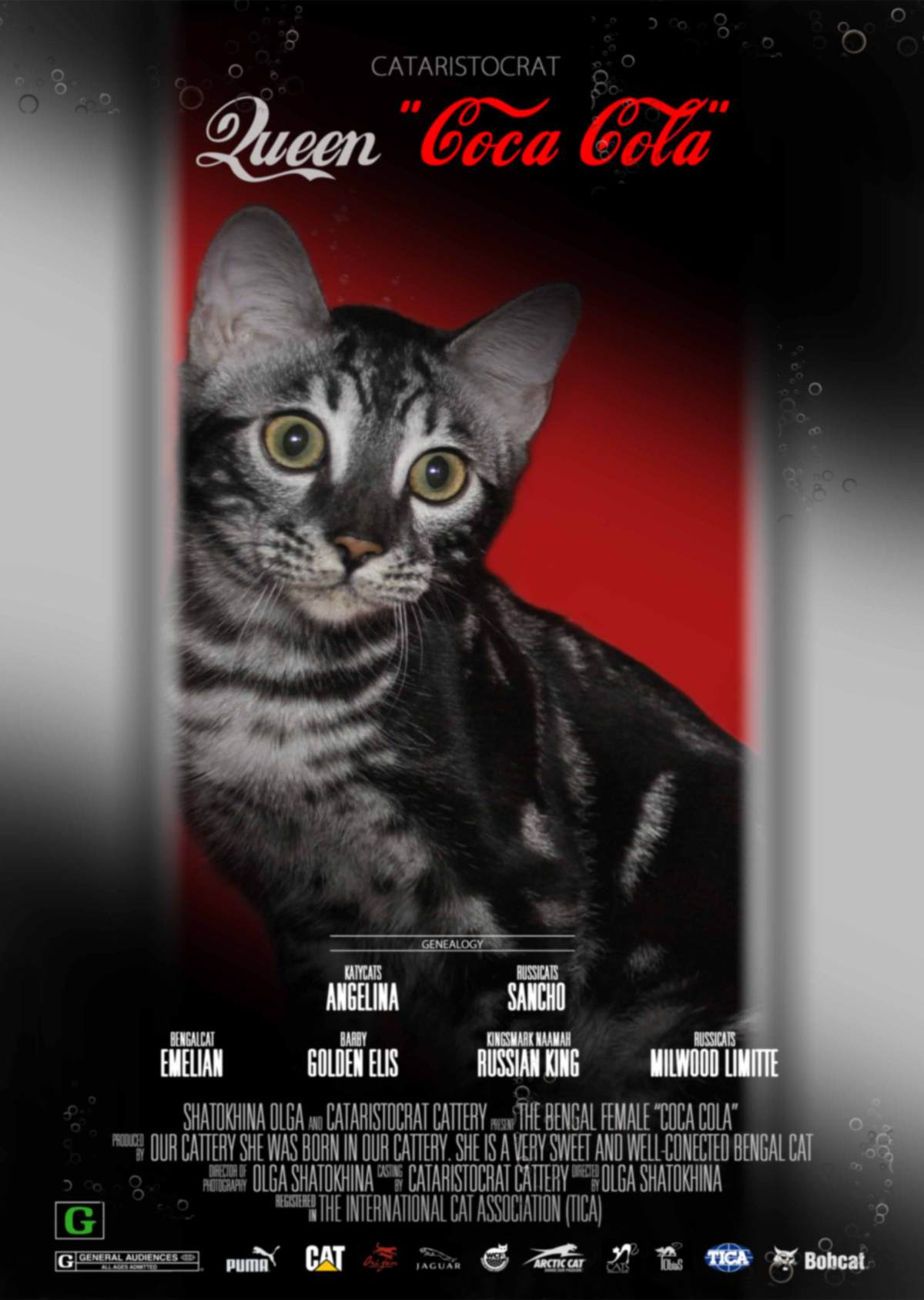 Bengal cat COCA COLA movie Poster CATARISTOCRAT