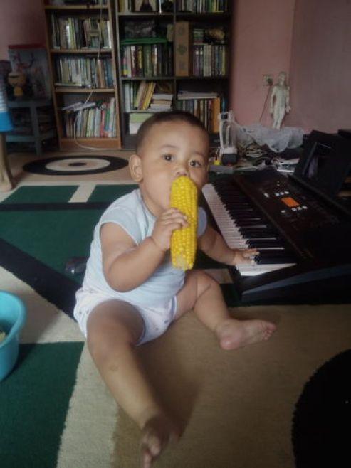 Okto sedang berusaha makan jagung