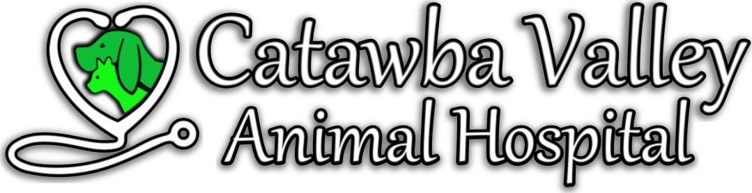 Catawba Valley Animal Hospital
