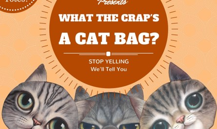 "CatBagz.com Presents ""What the Crap's a Cat Bag?"" Starring Ron Swanson as Tough but Loveable Smokey, the Gruff Cat Detective."