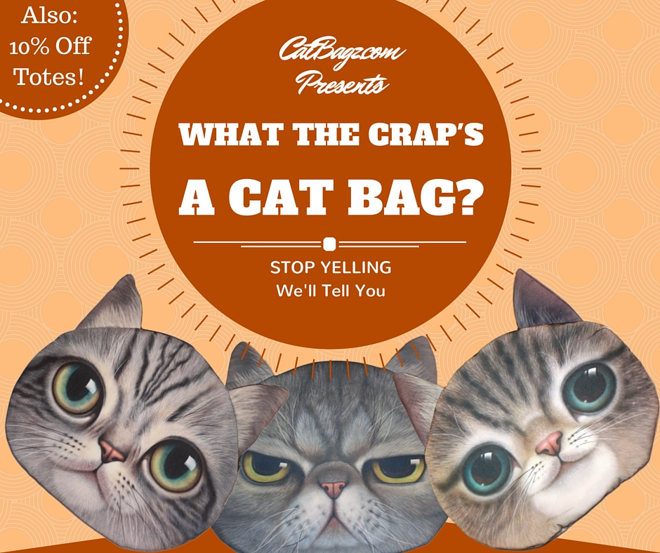 """CatBagz.com Presents """"What the Crap's a Cat Bag?"""" Starring Ron Swanson as Tough but Loveable Smokey, the Gruff Cat Detective."""
