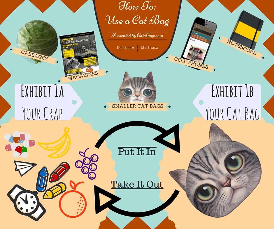 CatBagz.com Presents – How To Use A Cat Bag