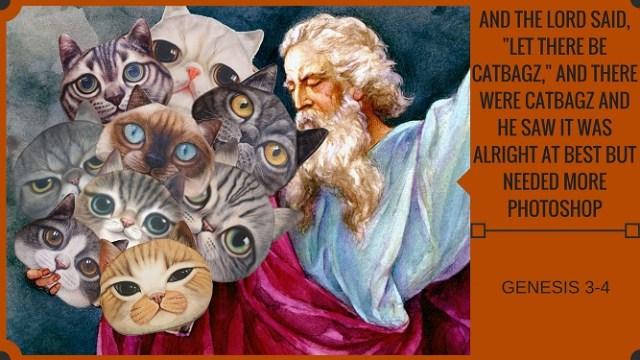 A Brief History Of CatBagz