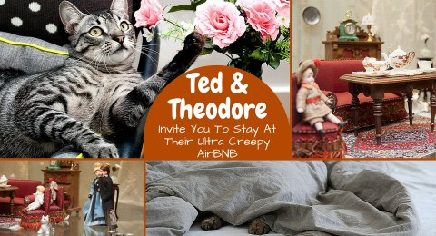 Ted & Theodore Invite You To Stay At Their Ultra Creepy AirBNB!