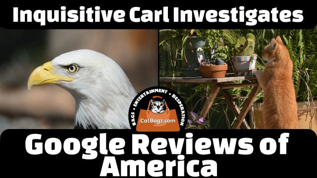 Inquisitive Carl Investigates: Google Reviews of America