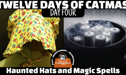 Twelve Days of Catmas - Day Four - Haunted Hats and Magic Spells
