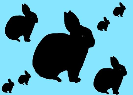 Rabbits Of Destruction
