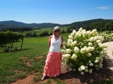 me at Pippin Hill Farm & Vineyards