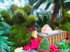 Topiary bear & U.S. Botanic Garden Conservatory