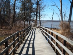 Boardwalk on Bay View Trail