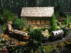 Electric train in the Conservatory