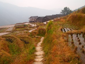 Farmland outside of Longji Village