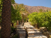 up & up the steps through the garden at Wekan, Oman