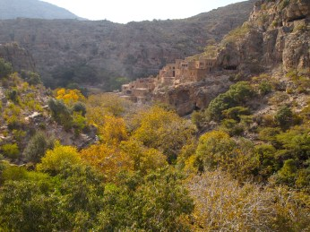fall colors at Wadi Bani Habib