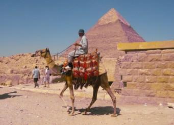 camel handler at Giza, Cairo, Egypt