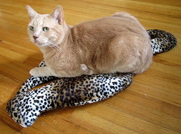 Leopard-Crinky-5