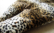 Leopard Crinkly Mat